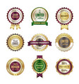 luxury premium badges high quality golden crown vector image