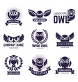 owl badges flying birds with feathers wild vector image