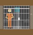 prisoner flat of prison cell vector image vector image