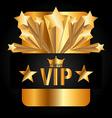 vip membership vector image vector image