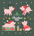 cute christmas pig set new year winter piggy vector image vector image