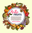 exotic fruits and tropical berries frame vector image vector image