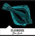 flounder for a seafood menu vector image