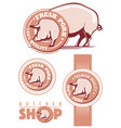 fresh pork labels with pig vector image