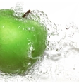 Green apple with water splash Gradient vector image