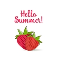 Hello Summer strawberry vector image vector image