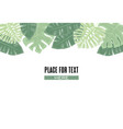 palm green leaves vector image vector image
