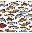 sea fish ocean seafood marine animals pattern vector image vector image