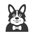 Welsh Corgi Pembroke wit Bowtie Icon Cartoon vector image