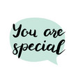 you are special text vector image vector image