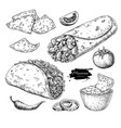 mexican food drawing traditional cuisine vector image