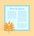 beer and spices poster with pilsner glass vector image vector image