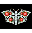 Butterfly brooch vector image vector image