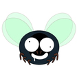 mad fly cartoon vector image vector image