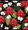 red torch ginger seamless pattern with white vector image