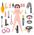 Set adult sexy toys and sex doll pasion vector image