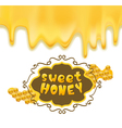 sweet honey vector image