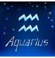 01 Aquarius horoscope sign vector image vector image