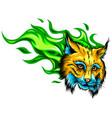 cat head cartoon style vector image vector image