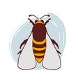 hand drawn doodle bee vector image