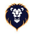 lion head roaring logo mascot design vector image vector image