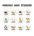 monthly baby stickers for little girls and boys vector image