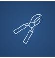 Pruner line icon vector image vector image