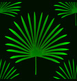tropical palm leaves jungle leaves seamless vector image vector image