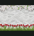 tulips tree branch grass white brick wall vector image vector image