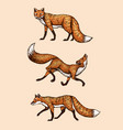 wild red fox set forest ginger animal flying and vector image vector image