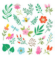 floral design elements and insects vector image