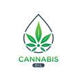 cannabis oil logo design vector image vector image