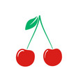 color cherry icon isolated on background modern f vector image vector image
