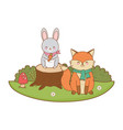 cute animals in field woodland characters vector image vector image