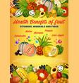 exotic fruits vitamins durian physalis kumquat vector image vector image