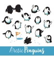 Set with funny hand drawn arctic penguins vector image