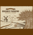 wheat organic farming landscape vector image vector image