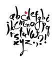 Calligraphical Latin Alphabet vector image