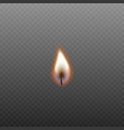 candle fire in burning wick isolated on dark vector image vector image