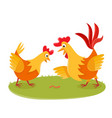 cartoon rooster and chicken on grass isolated on vector image