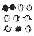 Collection of arctic penguins in cartoon style vector image vector image