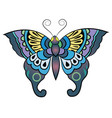 fantasy butterfly vector image vector image