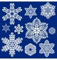 Snowflake winter set vector image