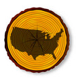 usa map on timber section vector image vector image
