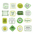 bio labels vegan green eco food gluten free vector image