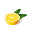 realistic bright yellow lemon with green leaf half vector image vector image