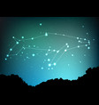 whale constellation art sea whale in vector image vector image