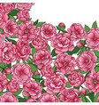 peonies squared mock up vector image vector image