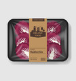 radicchio salad leaves with plastic tray container vector image vector image