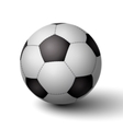 Realistic soccer ball for football icon vector image